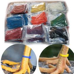 Dây rút nhựa màu (2.5x100mm) - Hàng nhập khẩu