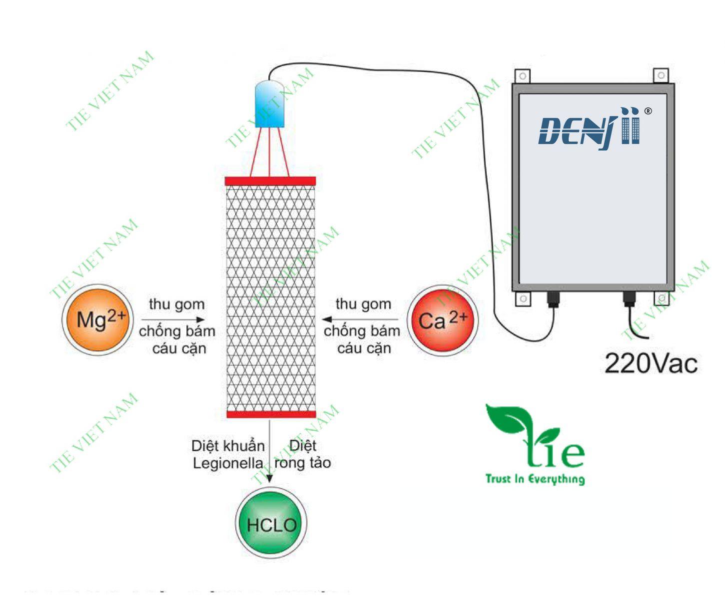 Hệ thống xử lý cáu cặn không dùng hoa chất Denjii
