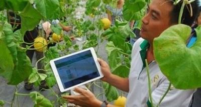 23 dự án startup công nghệ nông nghiệp tham gia MATCh 2018