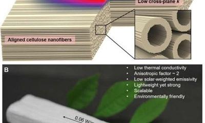 Gỗ nano - Vật liệu thân thiện với môi trường