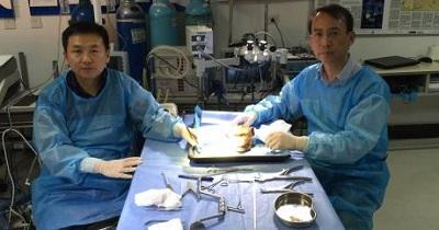 Nghiên cứu dùng sợi tơ tằm để sử dụng trong các ca phẫu thuật não